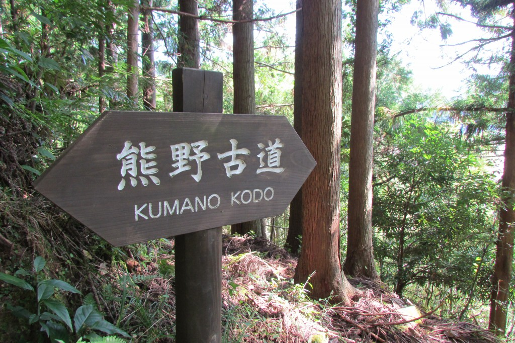 Along the Dainichi-goe trail, part of the Kumano Kodo.